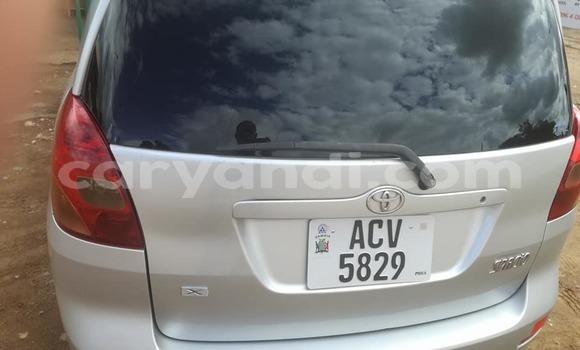 Buy Used Toyota Spacio Silver Car in Chipata in Zambia