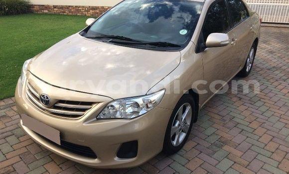 Buy Used Toyota Corolla Beige Car in Lusaka in Zambia