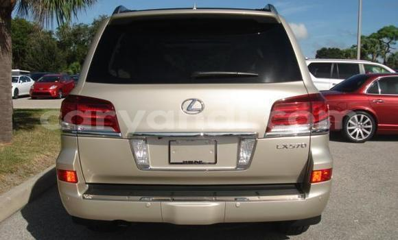 Buy Used Lexus LX Other Car in Kasama in Zambia