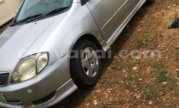 Buy Used Toyota Runx Silver Car in Lusaka in Zambia