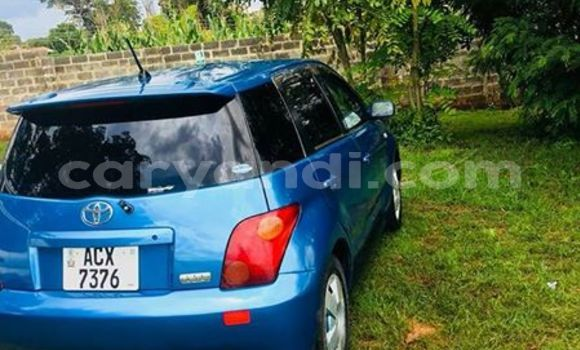 Buy Used Toyota IST Blue Car in Lusaka in Zambia