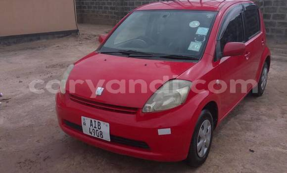Buy Used Toyota Passo Red Car in Lusaka in Zambia